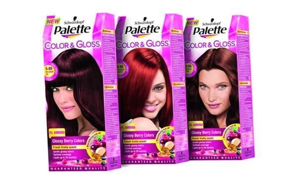 palette salon colors
