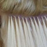 блондинки в тренде